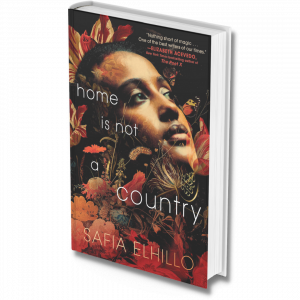 Home is Not a Country: A novel-in-verse about identity, belonging, and the true meaning of home